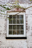 Old Window on Whitewashed Brick House. An old window with glass panes on a white washed brick house. A tree branch frames the photo royalty free stock photo