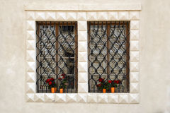 Old windows with bars and flowers Royalty Free Stock Images