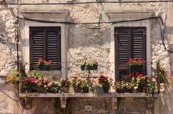 Old windows in Croatia. A couple of old windows in Pula in Croatia Stock Photos