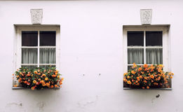 Old windows and flower box with orange flowers. Old window and flower box with orange flowers, Lithuania, Europe Royalty Free Stock Images