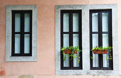 Old windows with flower pots Stock Photo