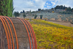 Old wine barrel in Tuscany autumn landscape Royalty Free Stock Image