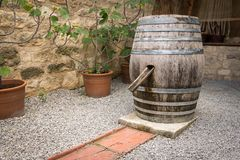 Old wine barrel used as water. In a garden stock photography