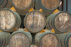 Old wine barrels in Codorniu winery in Spain Stock Photo