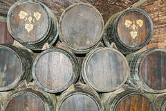 Old wine barrels in Codorniu winery in Spain Royalty Free Stock Photo