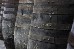 Old wine barrels stored in rows Royalty Free Stock Photos