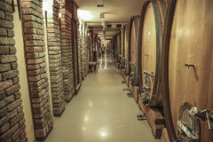 Old wine barrels in the wine cellar Stock Images