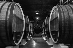 Old wine barrels in a wine cellar Royalty Free Stock Images