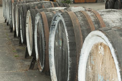 Old wine barrels Royalty Free Stock Photos