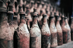 Old wine bottles covered with dust Stock Image
