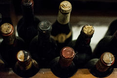 Old wine bottles Royalty Free Stock Photo