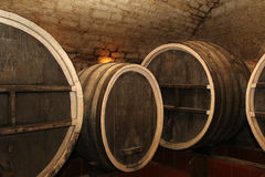 The old wine cask. In the cellar stock photography