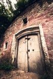 Old wine cellar door Stock Images