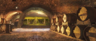 Old wine cellar Royalty Free Stock Image