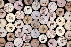 Old wine corks. On a black background Stock Images
