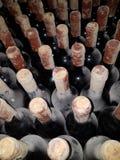 Old wine wine cellar grape wine winery. Old wine wine cellar mold bottle Stock Photo