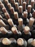 Old wine wine cellar grape wine winery. Old wine wine cellar mold bottle Stock Photography