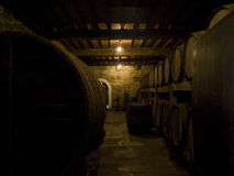 Old winery Royalty Free Stock Photos