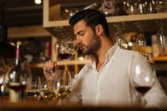 Smart attractive man working as a sommelier. Old winery. Smart attractive man checking the wine quality while working as a sommelier in the winery stock photos