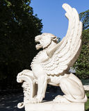Old winged lion Stock Image