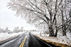Old Winter Road Royalty Free Stock Photo