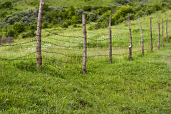 Old wire fence Royalty Free Stock Images