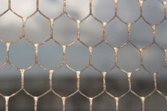 Old Wire Mesh On Doxi Stracca Fontana Palace In Gallipoli (Le) Royalty Free Stock Image