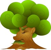 Old wise tree with a lush, green crown, dozing. On a white background stock illustration