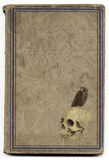 Old witchcraft book. Very old brown witchcraft book with framed cover illustrated with a skull and a crow. Good for halloween Stock Photo