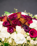 Old, wither, roses bouquet  Royalty Free Stock Image
