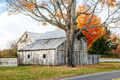Old Withered Barn royalty free stock images