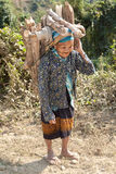 Old woman Asia carry firewood Royalty Free Stock Images