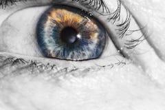 Old woman beautiful human eye, macro, close up blue, yellow, stock photography
