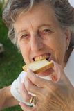 An old woman biting a toast Stock Images