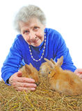 Old woman with bunny. Old woman with red bunny Stock Photography