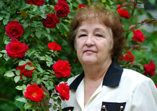 Old woman at a bush of roses Stock Image