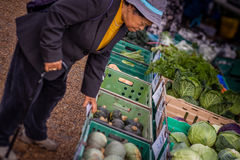 Old woman buying vegetables Stock Images