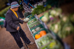 Old woman buying vegetables Royalty Free Stock Image