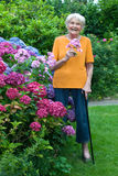 Old Woman with Cane Holding Flowers at the Garden Stock Photography