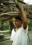 Old woman caring brushwood sheaf. On Bali Stock Photos