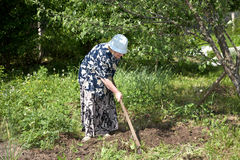 The old woman with a chopper works in garden Stock Photo