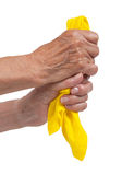 Old woman cleaning Royalty Free Stock Photo