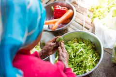 Old woman cutting vegetable in a village in Thailand royalty free stock photography
