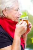 Old woman drinking tea. Portrait of a old woman drinking tea, autumn background Stock Photos