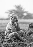 Old woman farmer Royalty Free Stock Photography
