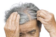 Old woman felt a lot of anxiety about hair loss issue. On white background, scalp problem concept Royalty Free Stock Photography