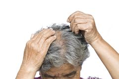 Old woman felt a lot of anxiety about hair loss issue. On white background, scalp problem concept Stock Photos