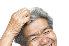 Old woman felt a lot of anxiety about hair loss and itching dandruff issue. On white background, scalp problem concept Stock Photography