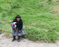 Old Woman flower vendor in Peru Royalty Free Stock Photos
