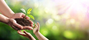 Free Old Woman Giving Young Plant To A Child Environmental Protection Stock Photography - 174548152